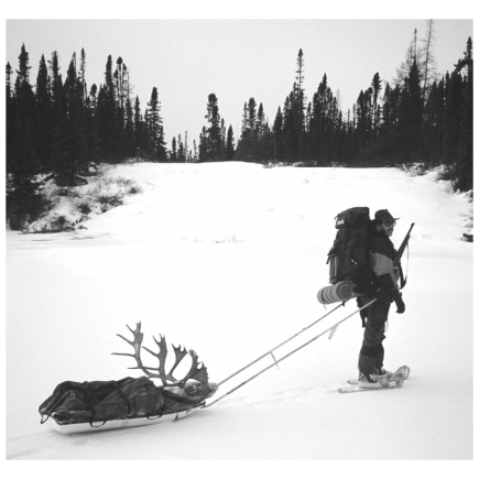 Backcountry Sleds Person Pulling Caribou Head with Heaby Back Pack and Rifle in Hand